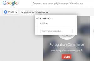 Google Plus público