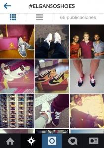 instagram el ganso