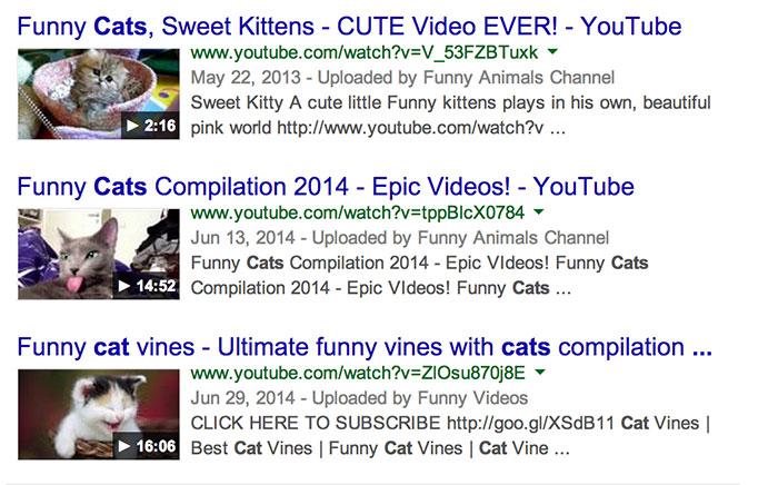 Gatos, una keyword que si muestra videos