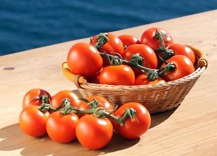 tomates gourmet
